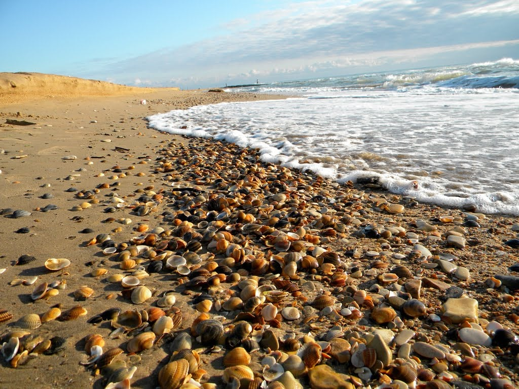 можно подарить фото каспийских пляжей последний сможете