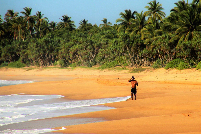 Лучшее время для отдыха в Шри-Ланке. Особенности погоды по месяцам